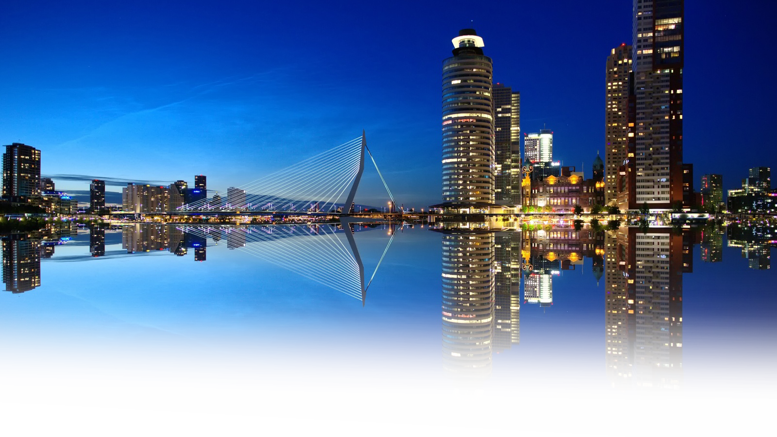 rotterdam skyline night wallpaper
