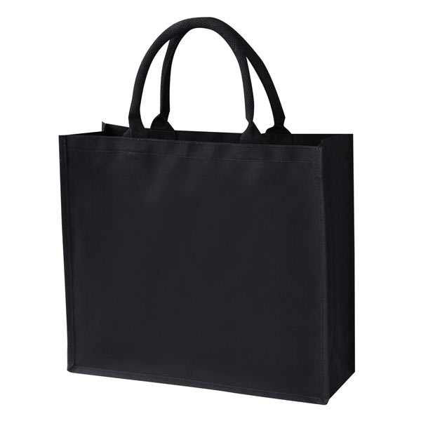 Laminated Black Canvas Bag