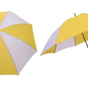30 inches Dual Colors Umbrella